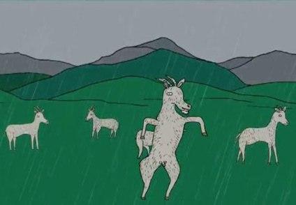Goodbye sheep & goats